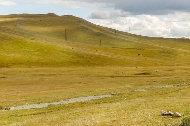 Linia wysokiego napięcia przebiega przez wzgórza w mongolii, piękny mongolski krajobraz