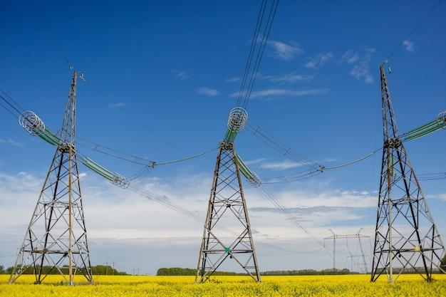 Linie energetyczne i linie wysokiego napięcia na tle kwitnącego rzepaku w letni dzień