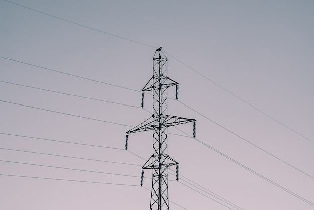Linie energetyczne post z bliska