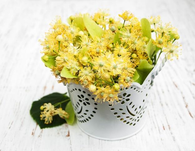 Lipowi kwiaty na białym drewnianym tle