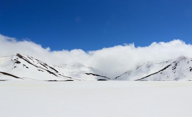 Lis lodowiec w zimie, nowa zelandia.
