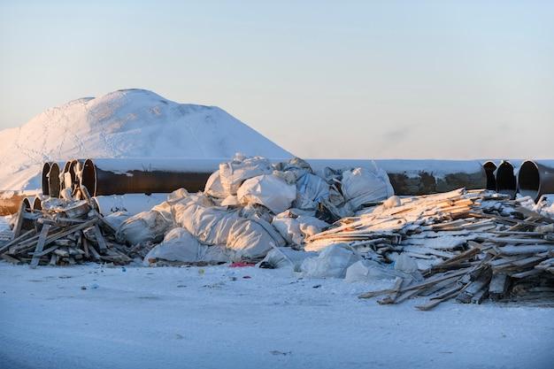Lis polarny szukający jedzenia w śmieciach zimą wysyp w tundrze