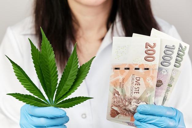 Liść konopi i banknot korony czeskiej w rękach kobiety w gumowych rękawiczkach i fartuchu medycznym. przychody z produktów wykonanych z konopi indyjskich. legalizacja marihuany