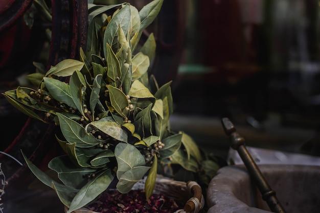 Liść laurowy ziołowy z zaprawą, aromatyczną przyprawą