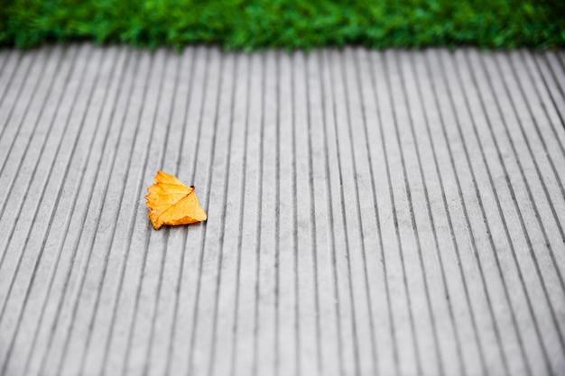 Liść na betonowej podłoga z zieloną trawą na tle. początek jesieni. koncepcja upadku.