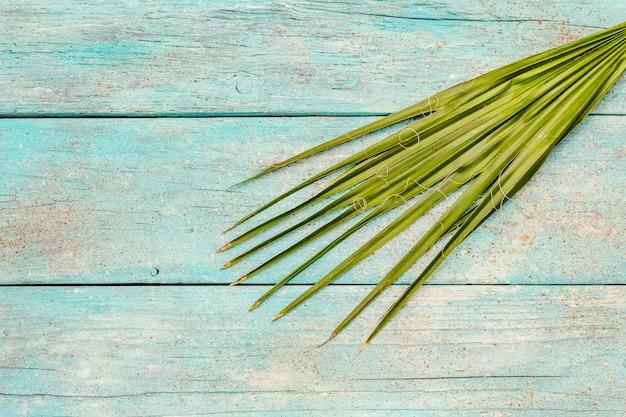 Liść palmowy na modnym turkusowym drewnianym tle
