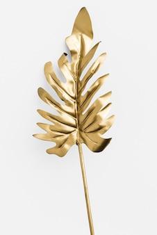 Liść philodendron xanadu pomalowany na złoto na białym tle