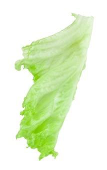 Liść sałaty. sałata na białym tle. ze ścieżką przycinającą