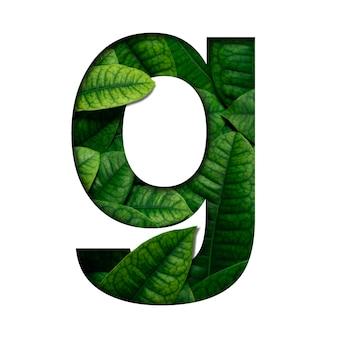 Liście czcionek g wykonane z żywych liści real w kształcie wyciętego papieru precious.