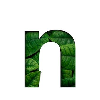 Liście czcionek n wykonane z żywych liści real w kształcie wyciętego papieru precious.