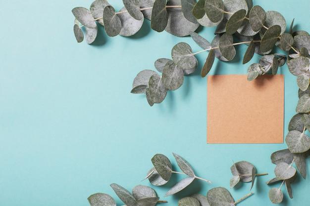 Liście eukaliptusa i karta rzemiosła na niebieskim tle papieru