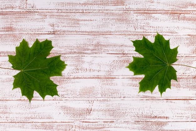 Liście klonowi na drewnianej tło kopii przestrzeni
