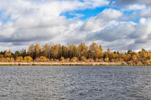 Liście klonu pomarańczowego w okresie jesiennym, przyroda parku, specyfika jesieni i rzeki