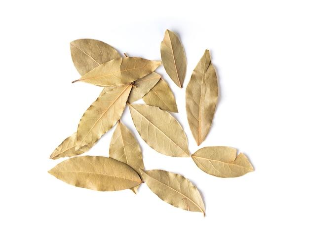 Liście laurowe na białym tle