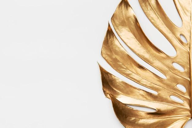 Liście monstera malowane złotą farbą na białym tle