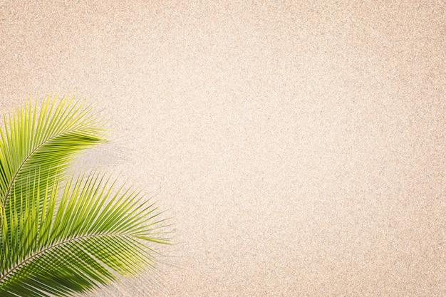 Liście palmowe na tle tekstury piasku. brązowy piasek. tło z drobnego piasku. tło piasku