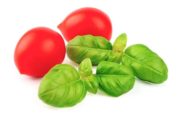Liście pomidora i bazylii na białym tle