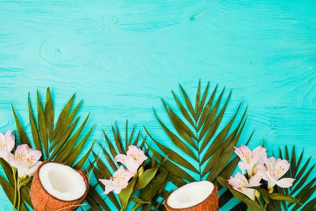 Liście roślin ze świeżymi orzechami kokosowymi i kwiatami