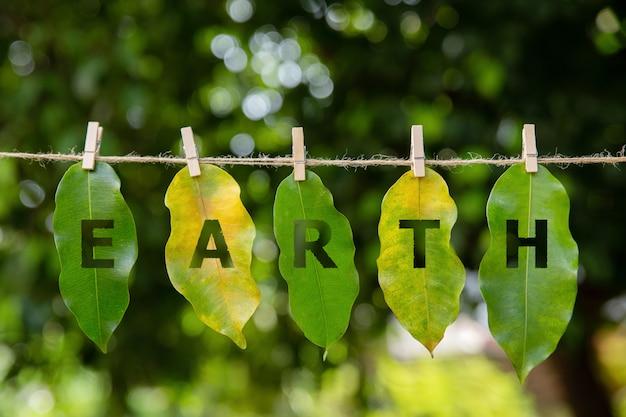 Liście są ułożone w słowo ziemia na zielono. światowy dzień ziemi. koncepcja dzień ziemi