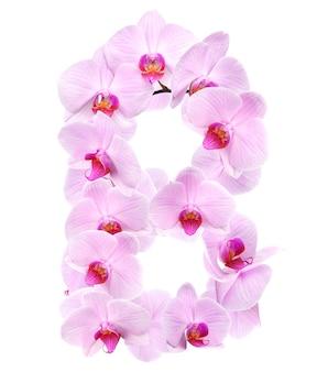 Litera b z kwiatów orchidei. na białym tle