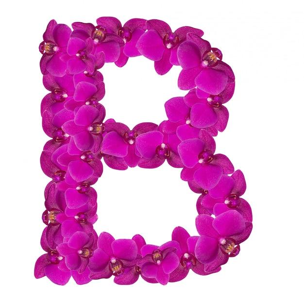 Litera b z płatków różowego kwiatu