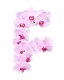 Litera f z kwiatów orchidei. na białym tle