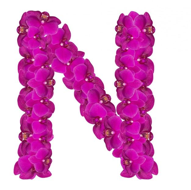 Litera n z płatków różowego kwiatu