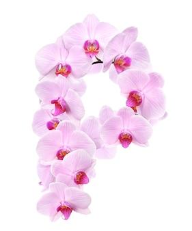 Litera p z kwiatów orchidei. na białym tle