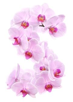 Litera s z kwiatów orchidei. na białym tle