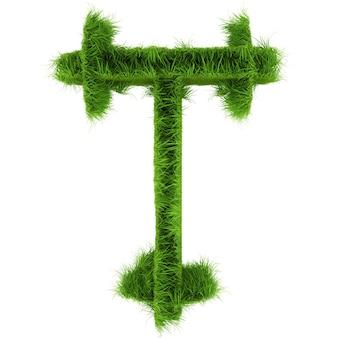 Litera t wykonana z kwiatów i trawy na białym tle. ilustracja 3d.