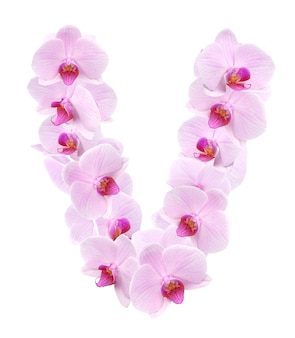 Litera v z kwiatów orchidei. na białym tle