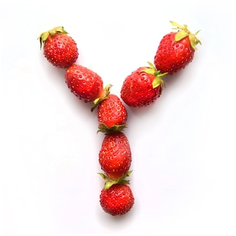 Litera y alfabetu angielskiego czerwonych świeżych truskawek na białym tle