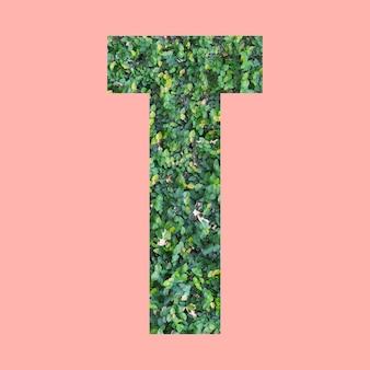 Litery alfabetu w kształcie t w stylu zielonych liści na pastelowym różowym tle do projektowania w twojej pracy.