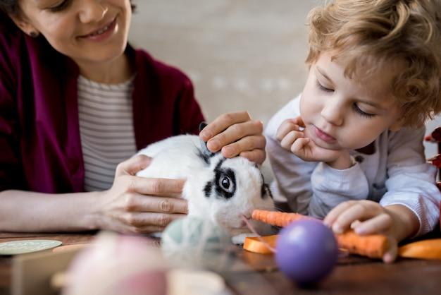 Little boy feeding pet bunny