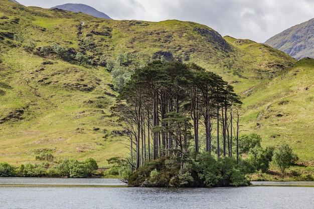 Loch eilt to słodkowodne jezioro w lochaber, w west highlands w szkocji