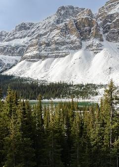 Lodowiec crowfoot of canadian rockies zimą w parku narodowym banff, alberta, kanada