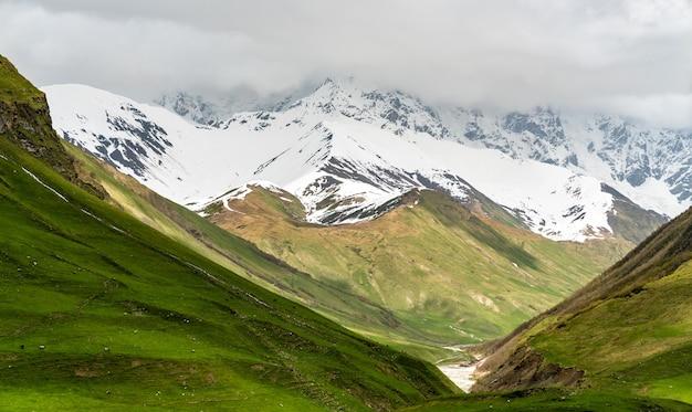 Lodowiec shkhara w pobliżu wioski uszguli w paśmie górskim wielkiego kaukazu, gruzja
