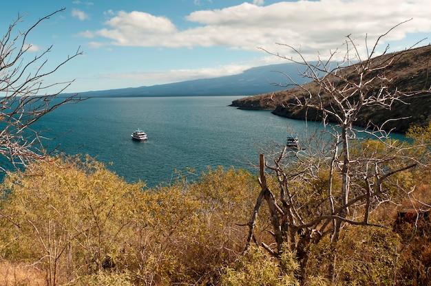 Łodzie w lagunie, tagus cove, isabela island, wyspy galapagos, ekwador