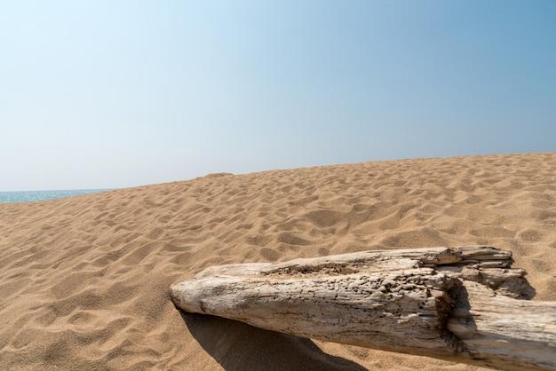 Loguje się na plaży na wyspie phuket