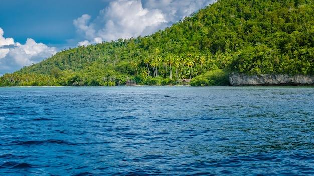 Lokalna wioska na wyspie monsuar. raja ampat, indonezja, papua zachodnia