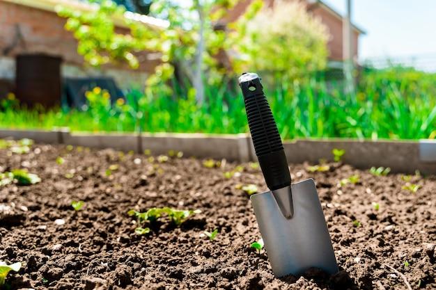 Łopata w ogrodzie w sezonie letnim koncepcja pracy w ogrodzie