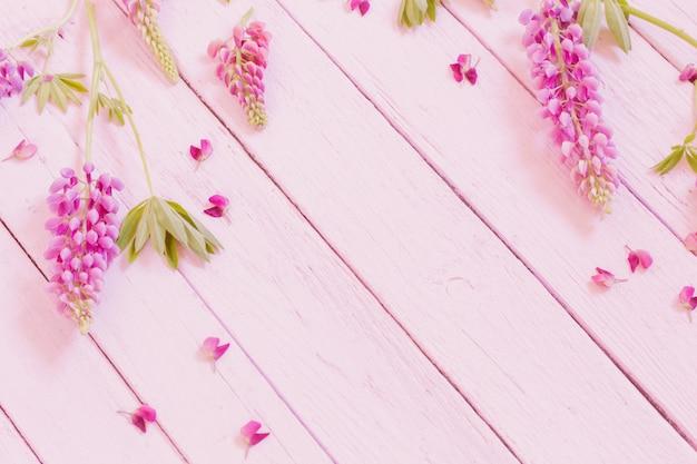 Łubin na różowym drewnianym tle