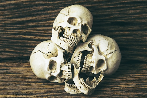 Ludobójstwa, czaszka na drewnianym tle