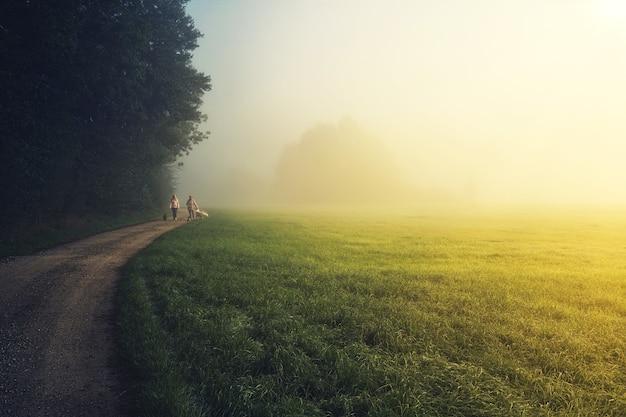Ludzie chodzą na zielonej trawie w ciągu dnia