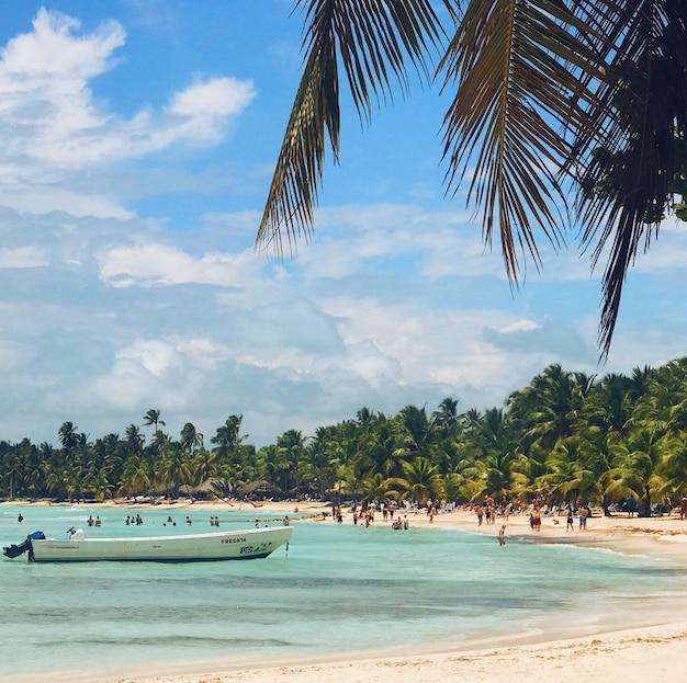 Ludzie chodzą na złotej plaży z palmy przed turkusową wodą