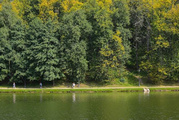 Ludzie chodzą w letnim zielonym parku