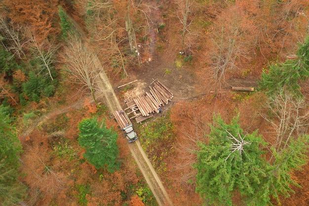 Ludzie ładują pnie drzew na ciężarówkę