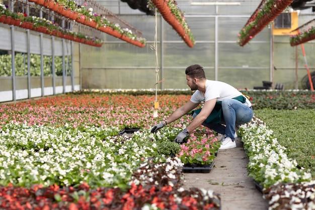 Ludzie pracujący w sklepie ogrodniczym