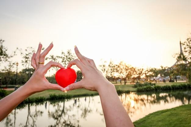 Ludzie ręka trzyma czerwone serce gąbki nad jeziorem