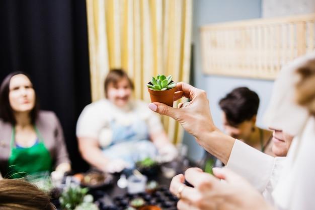 Ludzie są wyrzucani z rośliny, rękawiczki i sukulenty